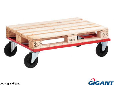 Pallet trolley low