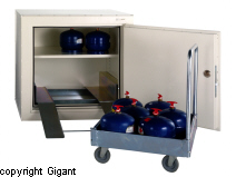 Gas and LPG cabinet